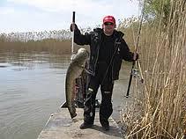 В чем особенности рыбалки в Астрахани?